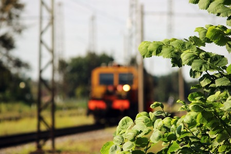 flatcar: Railcar for maintenance of the railway and security checks and the young elm leaves in the foreground Stock Photo