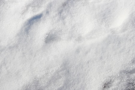 soggy: background of fresh white wet snow winter outdoor. Stock Photo