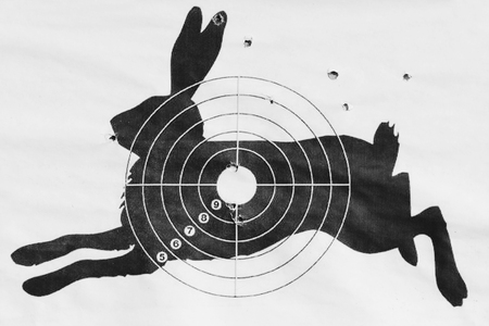 Black and white photo The shot target for shooting from a pneumatic in the form of a hare Stock Photo