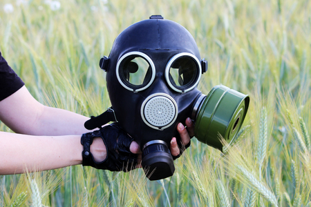 army face: Gas mask opposite the wheat field. The concept of an environmental disaster. Stock Photo