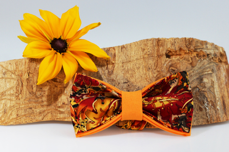 Composition: Extravagant orange bow tie, yellow flower and piece of sawn timber on a white background Stock Photo