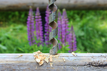 borax: Metal spiral drill for making holes in logs when assembling a wooden frame and building a house against the background of purple lupine flowers Stock Photo