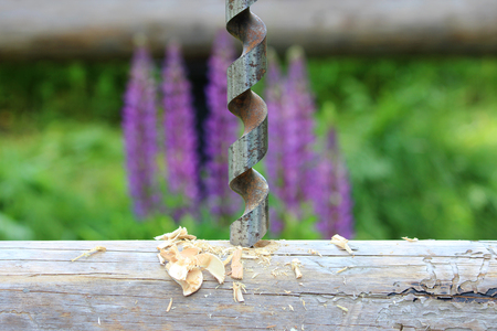 borax: Metal spiral drill for making holes in logs when assembling a wooden frame and building a house against the background of purple lupine flowers. Stock Photo