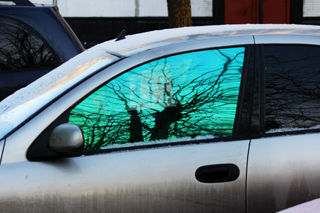 reflection of a tree in a tinted green car window