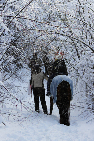 Balade à cheval sur un cheval dans la forêt d'hiver avec une escorte. le cheval est vêtu d'une couverture. Banque d'images - 95402972