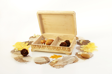 open wooden hand-made box with skeletonized leaves, acorns and cones on a white background Фото со стока - 97594253