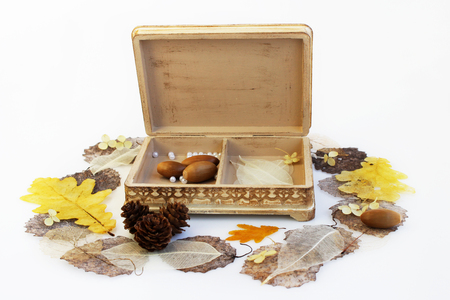 open wooden hand-made box with skeletonized leaves, acorns and cones on a white background Фото со стока