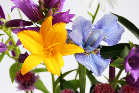 a bouquet of different wild field and garden flowers: bell, lily, chives, iris Stok Fotoğraf