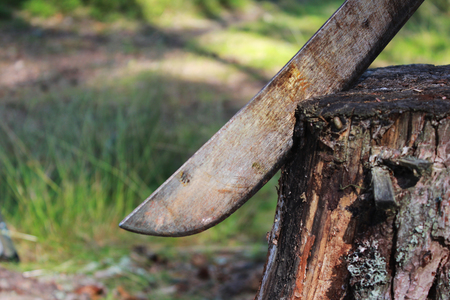 old rusty big machete knife sticks out in a stump in the nature during a picnic Stock Photo