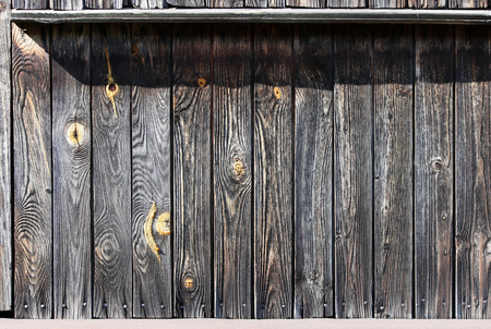 Vintage grey wood background with yellow knots. the wall of an old house Imagens