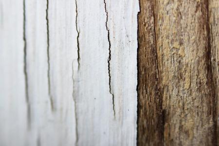 old white flaky peeling paint on a wooden window frame, macro.