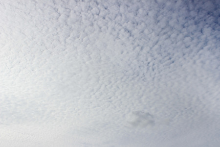 Light white cirrus clouds covering the large surface of the sky. Stock Photo