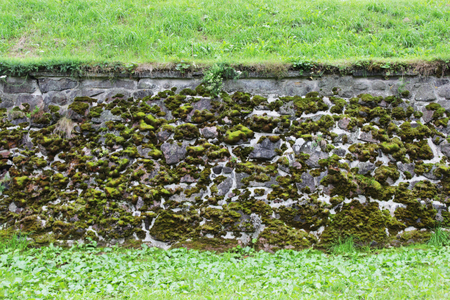 A stone wall with artistic veins, over which moss grows.