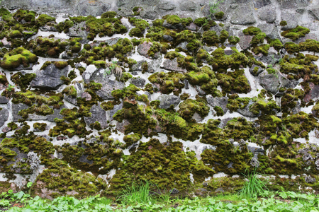 A stone wall with artistic veins, over which moss grows. Many cobblestones glued with cement. Karelia. Stock Photo