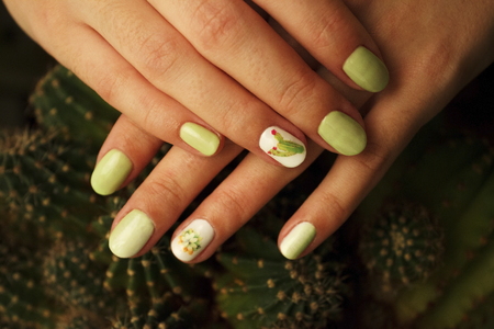 Classic cut manicure with gel polish, gradient and stylized stickers with cacti. Stylish trendy female manicure. Pot with green cactus plant near beautiful womans hands. Art Manicure. Multi-colored Nail Polish. Beauty hands. Stylish Colorful Nails.