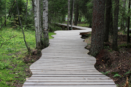 wooden patterned footbridge made of boards made in the forest near the Marble Canyon. Karelia, Ruskeala.