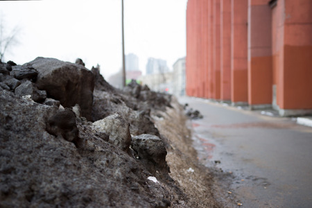 the mountains of dirty snow in the city are collected by snow removal equipment near the roads after anomalous snowfall in winter. Saint-Petersburg, Russia Stock Photo