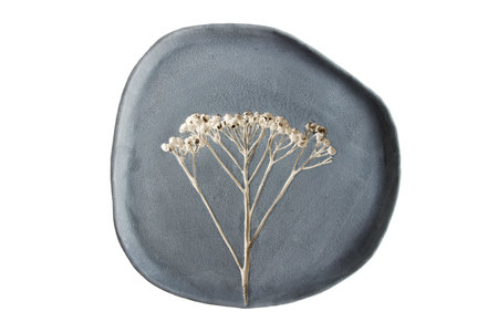 dry grass tansy printed on clay. the background is painted with engobe with the addition of black pigment. raw clay without roasting. isolated