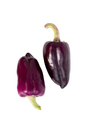 two violet peppers on a white background. isolated. vertical