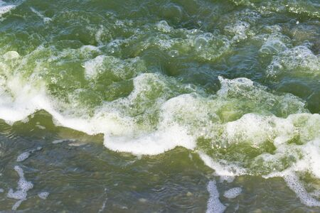 green water in the sea lagoon. the lagoon is a bay separated from the sea. the color of water is due to special microflora Banque d'images