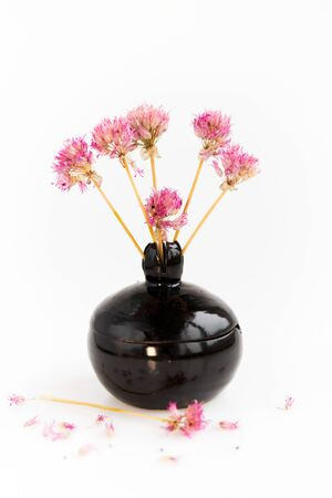 black clay pomegranate on a white background. original vase in the form of a pomegranate. dried flowering onions with purple flowers. Stok Fotoğraf