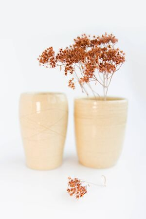 two beige vases with dried plants on a white background. minimalism style. interior decoration
