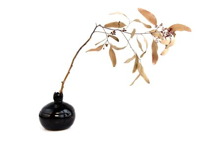 black clay pomegranate on a white background. original vase in the form of a pomegranate. dried laurel branch Banque d'images