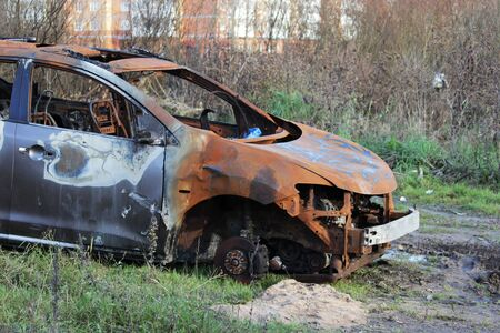 skeleton from a burnt passenger car is in the forest. rusty body
