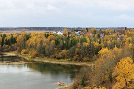 bird's eye view of the lake and autumn forest