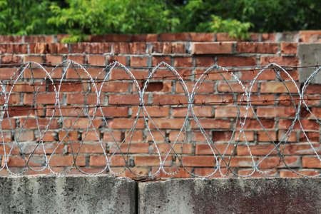 barbed wire on a brick wall background. Prison and freedom concept.