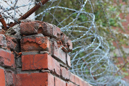 barbed wire on a brick wall. Prison and freedom concept.