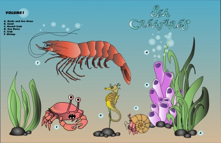 shrimp with various sea floor creatures Illustration