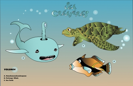 whale with sea turtle and tropical fish