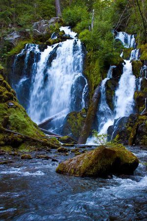 running water in Oregon, National Creek Falls Banco de Imagens