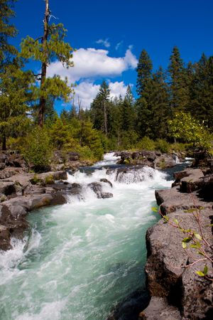 Rogue river in Oregon filtering trough the lava tubes