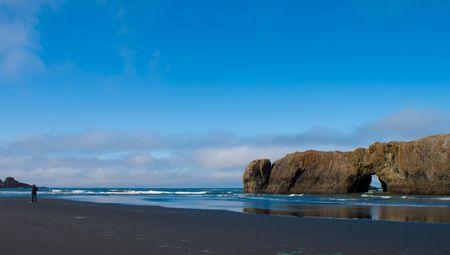 beautiful desolated beach in Oregon, mid summer