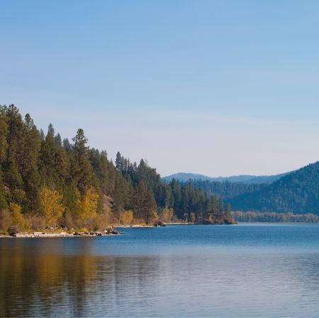 changing color: Finales de octubre, con�feras y algunas hojas de cambiar el color por el lago
