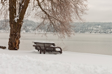 bench covered in snow in winter in idaho with a beautiful view of the lake photo