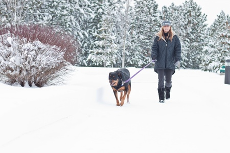 winter woman: caucasian woman walking a black dog in snow covered path Stock Photo