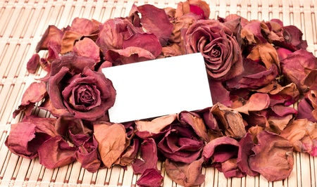 dried roses as a background with card for text in the middle photo