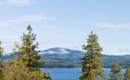 alene: View of coeur d alene lake from tubs hill fresh summer morning