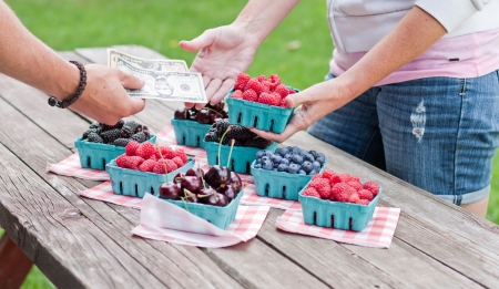 Fresh berries for sale with money transfer of money and berries between two people