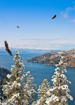 view of Coeur d Alene lake Idaho from mineral ridge hiking trail with three eagles in the winter photo