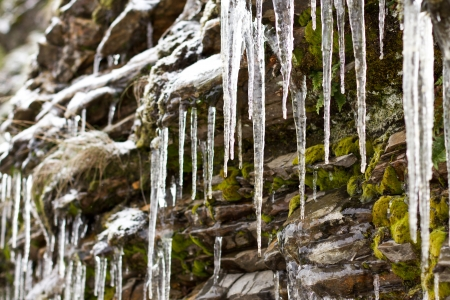 row of icicles hanging from rocks with green moss in december Stock Photo