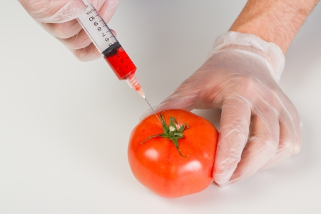 syringe injecting red steroids into a tomato representing gmo products on a white table 스톡 콘텐츠