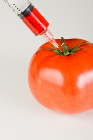 syringe injecting red steroids into a tomato representing gmo products on a white table Stock Photo