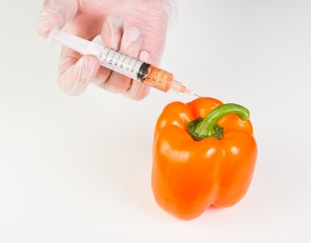genetically modified organism: hands holding a syringe with orange liquid next to a sweet pepper representing gmo, genetically modified organism or food