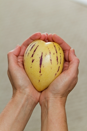 shaped: female hands holding a heart shaped pepino melon