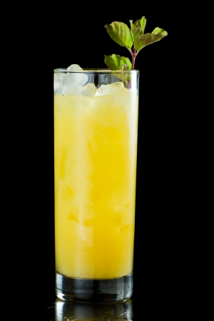 fresh organic orange juice and vodka in a tall glass isolated on a black background garnished with fresh green mint photo
