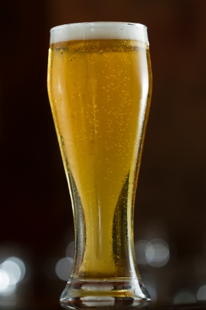 single beer: single beer served in a bar with an out of focus background